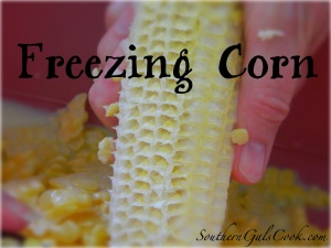 FreezingCornSGC