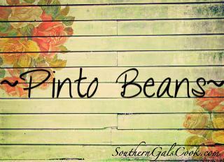 PintoBeansSGC