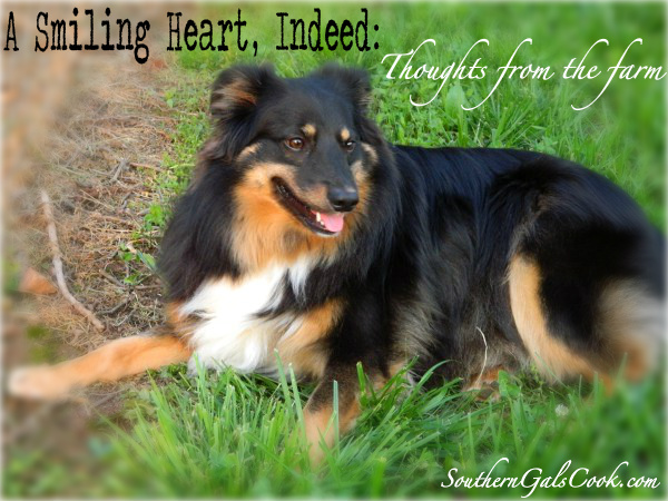 A Smiling Heart, Indeed: SouthernGalsCook.com
