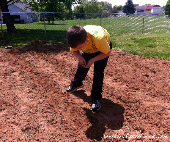 GardenPlanning4SGC