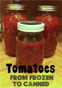 Tomatoes: From Frozen to Canned